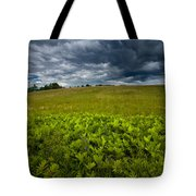 Sunlit Ferns And Purple Vetch Tote Bag