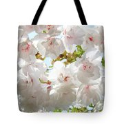 Sunlit Flowers Art Prints White Tree Blossoms Baslee Troutman Tote Bag