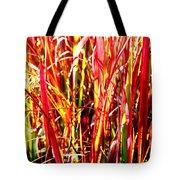 Sunlit Grass Tote Bag