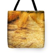 Sunlit Grasses Tote Bag