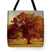 Sunlit Landscape Tote Bag