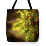 Sunlit Leaves Tote Bag