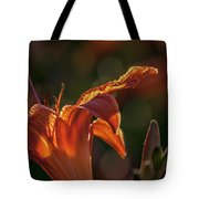 Sunlit Lilly Tote Bag