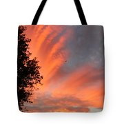 Sunlit Morning Tote Bag