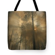 Sunlit Smoke Whispers The Firefighters Tote Bag