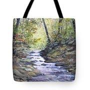 Sunlit Stream Tote Bag