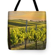 Sunlit Vineyard Tote Bag