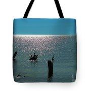 Sunlit Waters Tote Bag