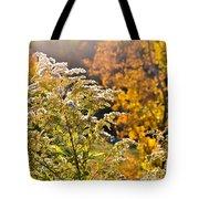 Sunlit Wildflower Tote Bag