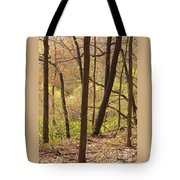 Sunlit Woods Tote Bag