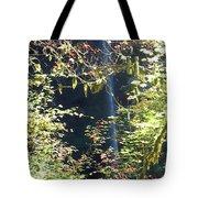 Sunlite Silver Falls Tote Bag