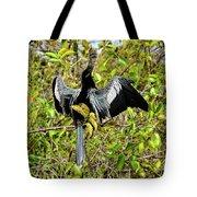 Sunning Anhingas Bird One Tote Bag