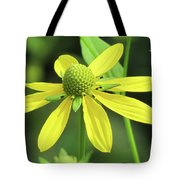 Sunning In The Sun Tote Bag