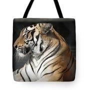 Sunning Tiger Tote Bag
