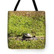 Sunning Turtle In Swamp Tote Bag