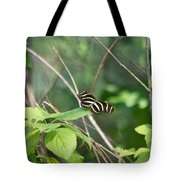 Sunning Zebra Longwing Butterfly Tote Bag