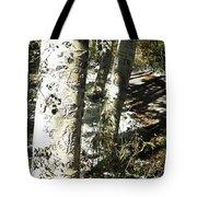 Sunny Aspen Shadows Tote Bag