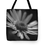 Sunny Daisy Black And White 2 Tote Bag
