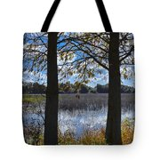 Sunny Day On The Pond Tote Bag