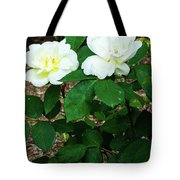 Sunny Knockout Tote Bag