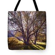Sunny Mono Tree Tote Bag