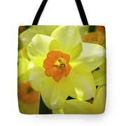 Sunny Narcissus Tote Bag