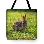 Sunny Bunny Tote Bag