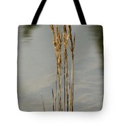 Sunny Reeds Reflect Tote Bag