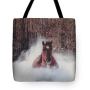 Sunny Running For The Barn. Tote Bag