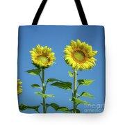 Sunny Skies Tote Bag