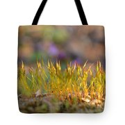 Sunny Spell Tote Bag