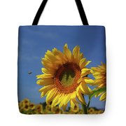 Sunny Sunflower Soloist With Backup Chorus Tote Bag