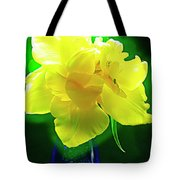 Sunny Tulip In Vase. Tote Bag