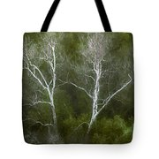 Sunol - Twins Tote Bag