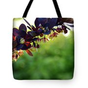 Sunrays With Blooms Tote Bag