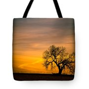 Sunrise 1-27-2011 Tote Bag