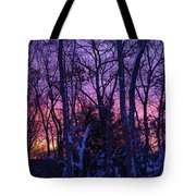 Sunrise And Snow Tote Bag