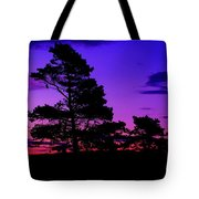 Sunrise At Point Pleasant Park Tote Bag