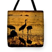 Sunrise At The Crane Pools Tote Bag