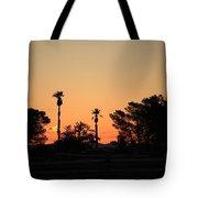 Sunrise At The Oasis Tote Bag