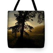 Sunrise Behind Elm Tree Tote Bag