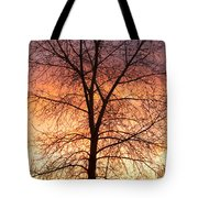 Sunrise December 16th 2010 Tote Bag by James BO  Insogna