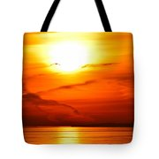 Sunrise Flying Two Tote Bag