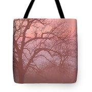 Sunrise Fog Tote Bag