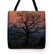 Sunrise From Bolton Ma Tote Bag
