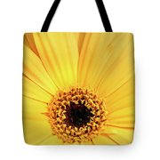 Sunrise Gerbera Tote Bag