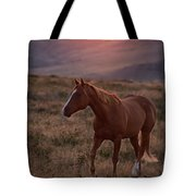 Sunrise Horse Tote Bag