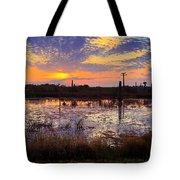 Sunrise In Viera Tote Bag