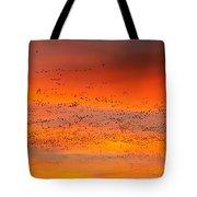 Sunrise Migration Tote Bag