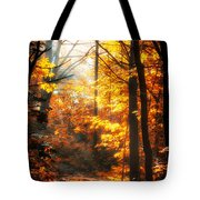 Sunrise Mist Through The Trees Tote Bag
